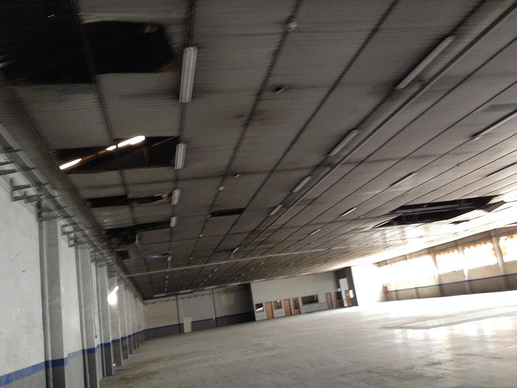 Detalles - Nave industrial en alquiler en calle Ramón Caselles, Polígon Sud-Oest en Sabadell - 240348115