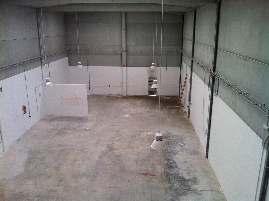 Planta baja - Nave industrial en alquiler en calle Serra Salut, Parque Central del Valles en Barbera del Vallès - 242052567