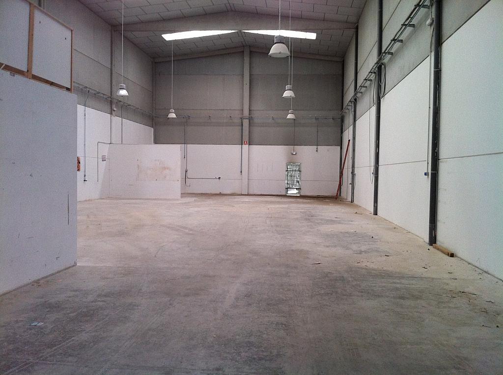 Planta baja - Nave industrial en alquiler en calle Serra Salut, Parque Central del Valles en Barbera del Vallès - 242052594