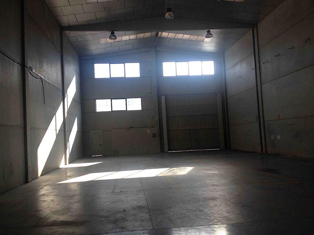 Planta baja - Nave industrial en alquiler en calle Serra Salut, Parque Central del Valles en Barbera del Vallès - 242058326