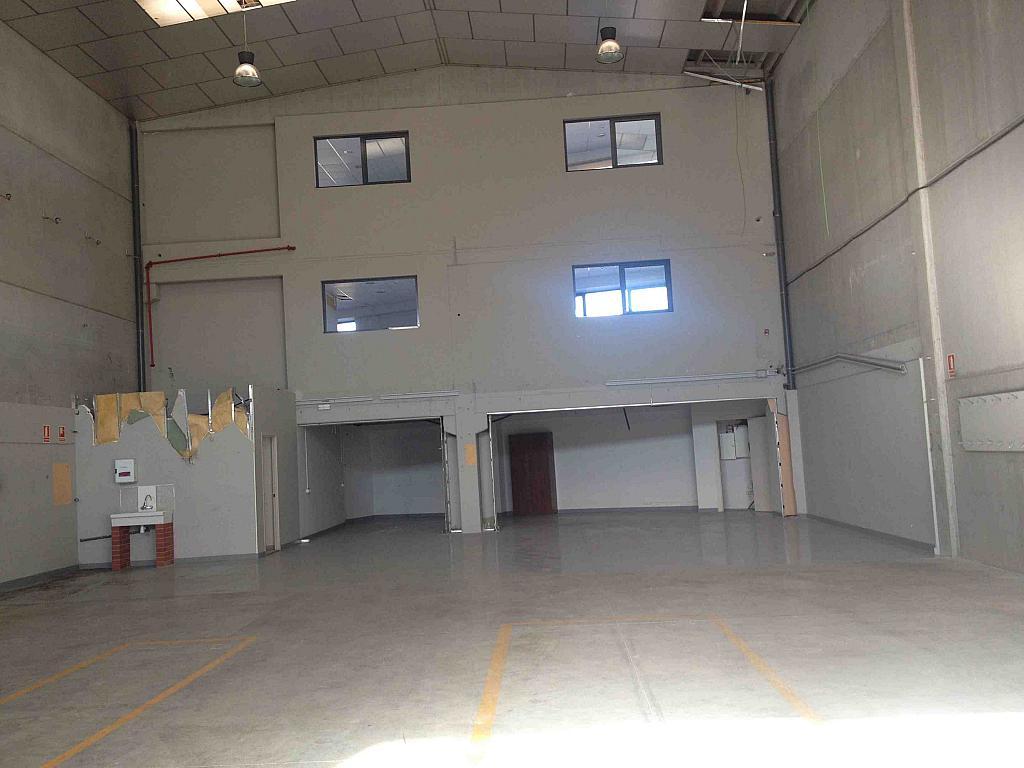 Planta baja - Nave industrial en alquiler en calle Serra Salut, Parque Central del Valles en Barbera del Vallès - 242058360