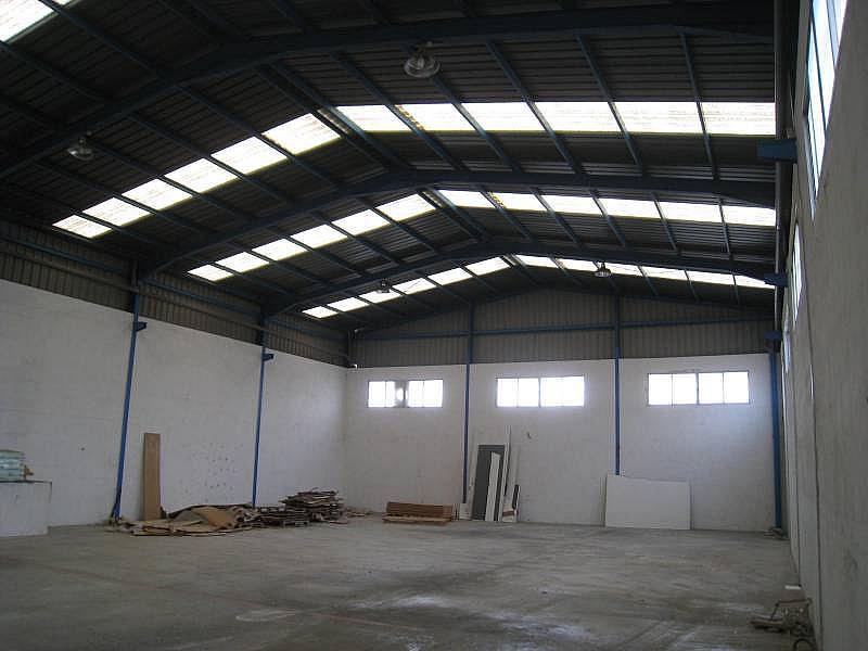 Foto - Nave industrial en alquiler en calle Tres Hemanas, Aspe - 248441216