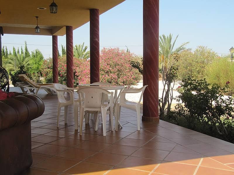 Foto - Chalet en alquiler en calle Jardines de San Isidro, Aspe - 303672731
