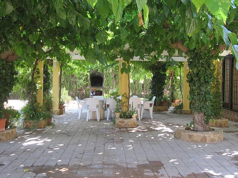 Foto - Chalet en alquiler en calle Jardines de San Isidro, Aspe - 303672737
