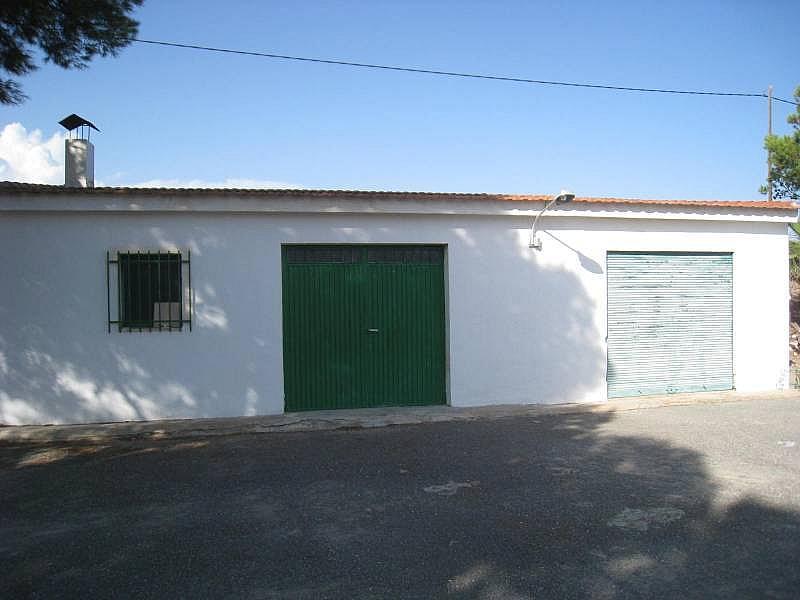 Foto - Chalet en alquiler en carretera La Romana, Aspe - 316151173