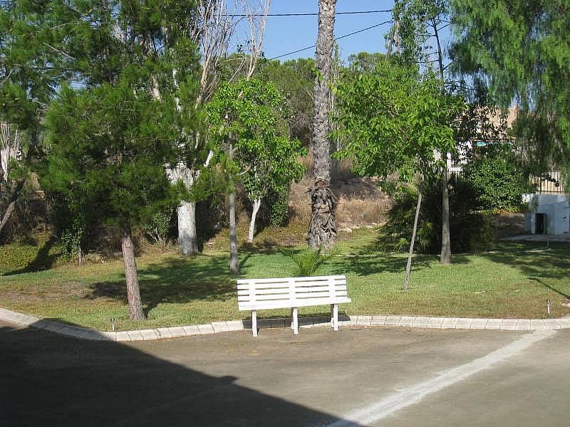 Foto - Chalet en alquiler en carretera La Romana, Aspe - 316151227