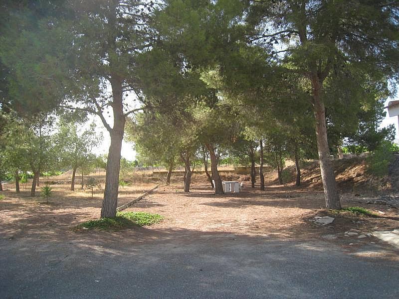 Foto - Chalet en alquiler en carretera La Romana, Aspe - 316151248