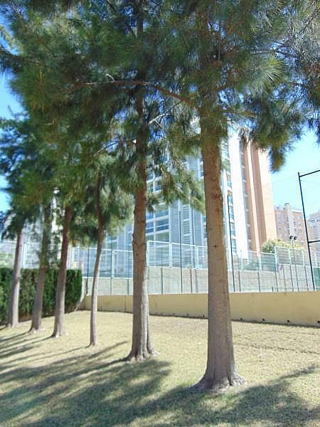 Foto - Apartamento en venta en calle Playa San Juan, Playa de San Juan en Alicante/Alacant - 289472009