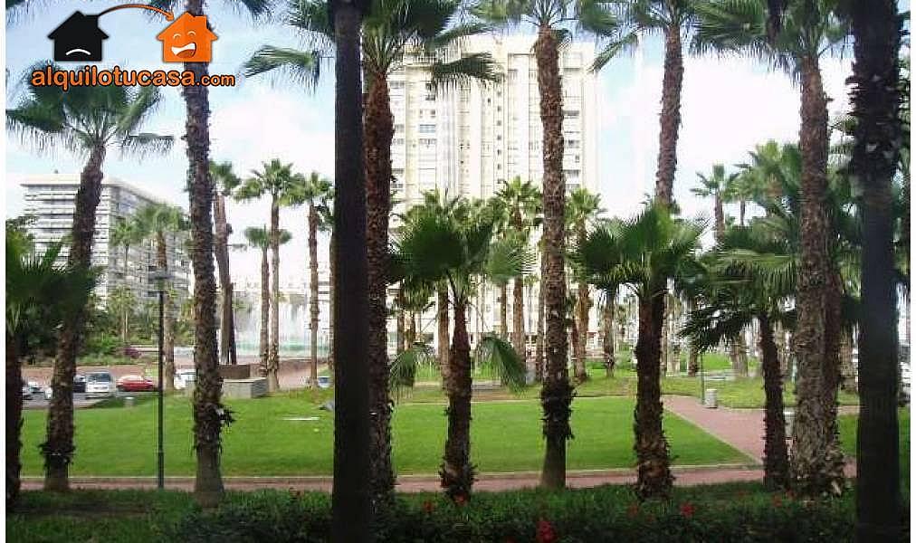 Foto - Oficina en alquiler en Centro en Palmas de Gran Canaria(Las) - 256726782