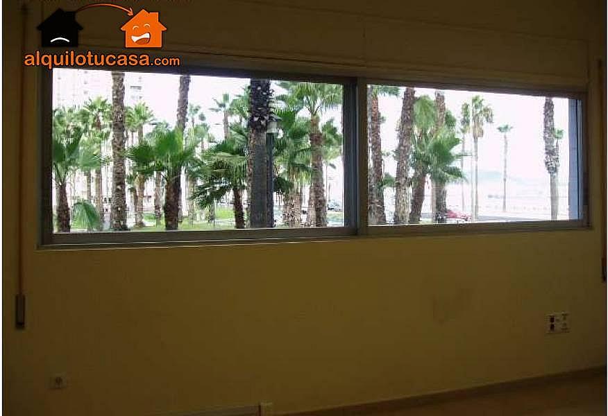 Foto - Oficina en alquiler en Centro en Palmas de Gran Canaria(Las) - 256726788
