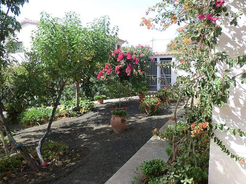 Foto - Chalet en alquiler en Santa Brígida - 313401314