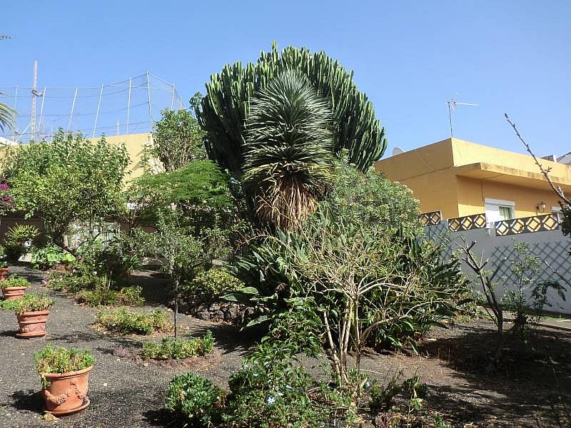Foto - Chalet en alquiler en Santa Brígida - 313401422