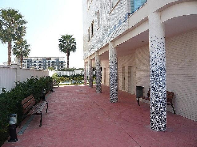 Foto 6 - Piso en alquiler en Guardamar - 285945926