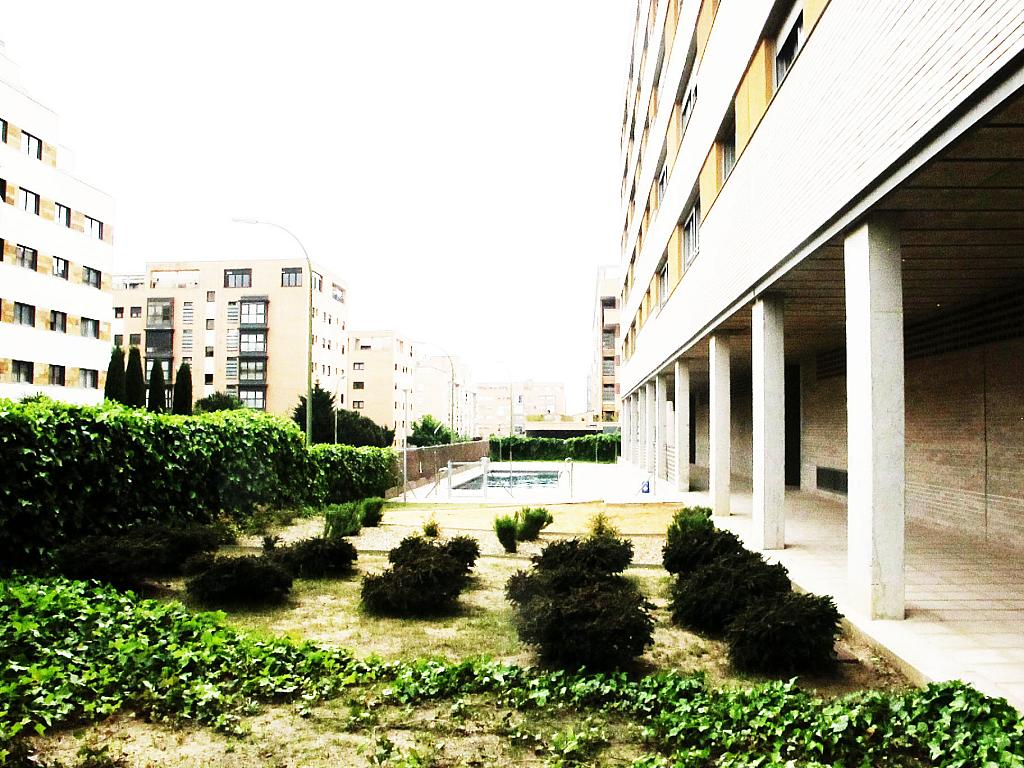 Piso en alquiler en calle Principe Carlos, Sanchinarro en Madrid - 272713014