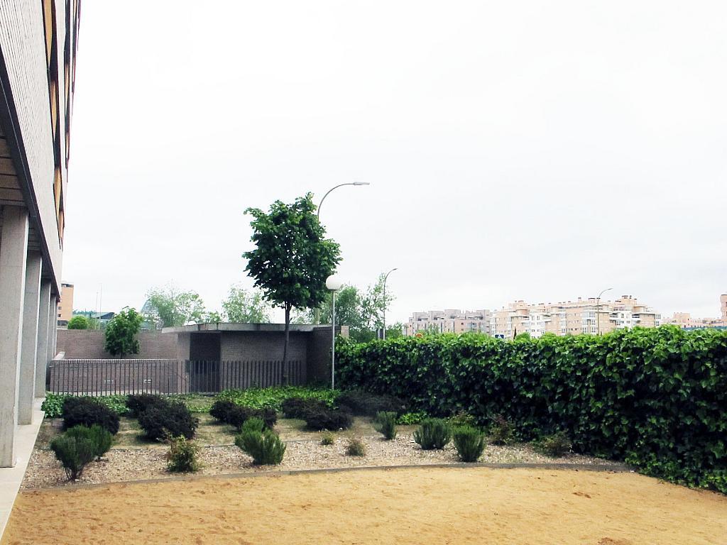 Piso en alquiler en calle Principe Carlos, Sanchinarro en Madrid - 273015841