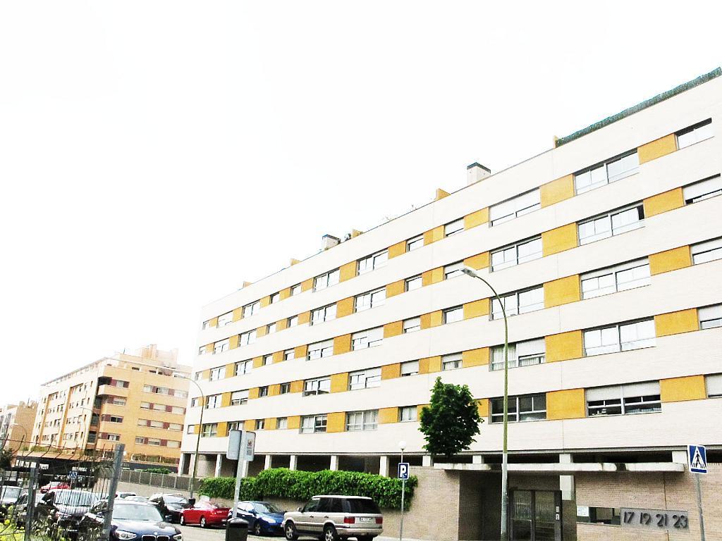 Piso en alquiler en calle Principe Carlos, Sanchinarro en Madrid - 273015861
