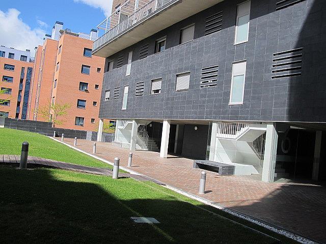 Piso en alquiler en calle Maria Tudor, Sanchinarro en Madrid - 278195637
