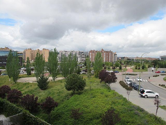 Piso en alquiler en calle Maria Tudor, Sanchinarro en Madrid - 278196393