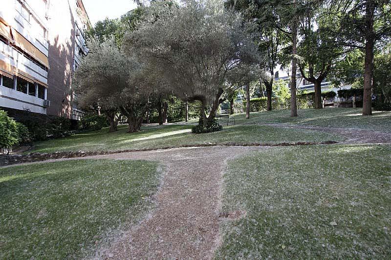 Piso en alquiler en calle Sandalo, Piovera-Conde Orgaz en Madrid - 322511197