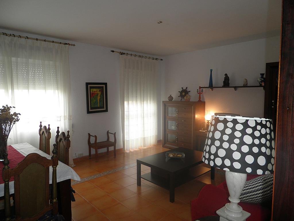 Salón - Piso en alquiler en calle Beatriz de Suabia, Nervión en Sevilla - 267230937