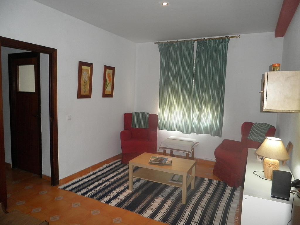 Salón - Piso en alquiler en calle Beatriz de Suabia, Nervión en Sevilla - 267230980
