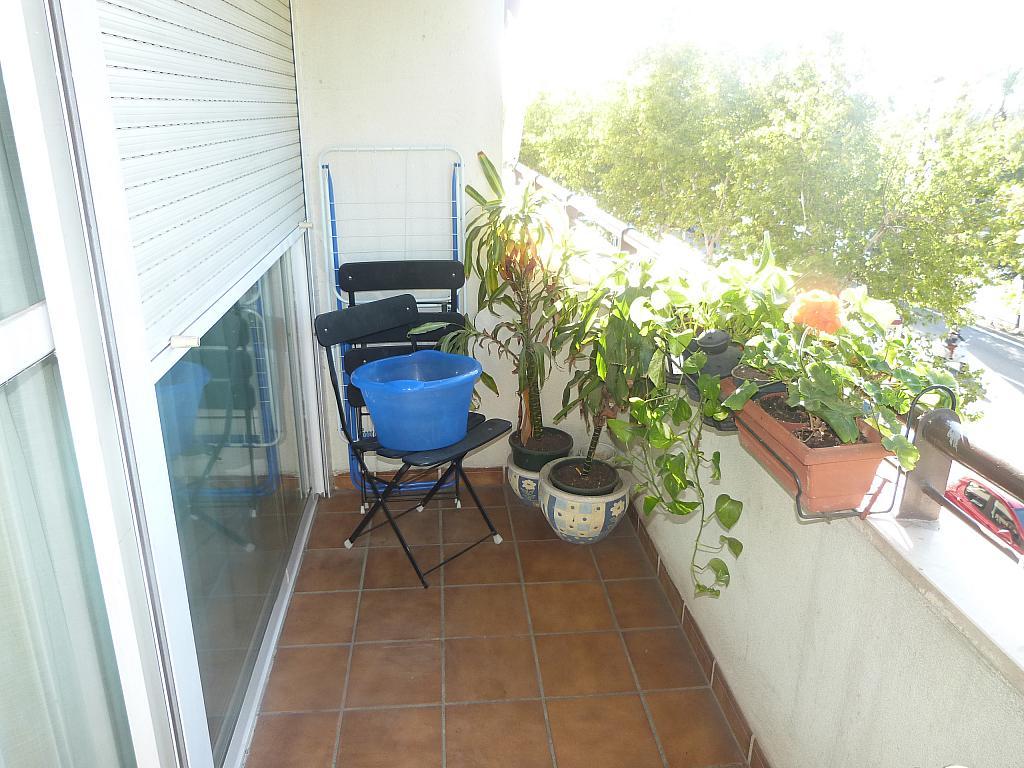 Piso en alquiler en calle Avicena, Doctor Barraquer - G. Renfe - Policlínico en Sevilla - 282433812