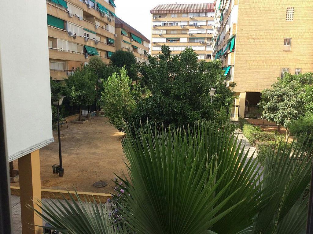 Piso en alquiler en calle Beatriz de Suabia, Nervión en Sevilla - 299725029