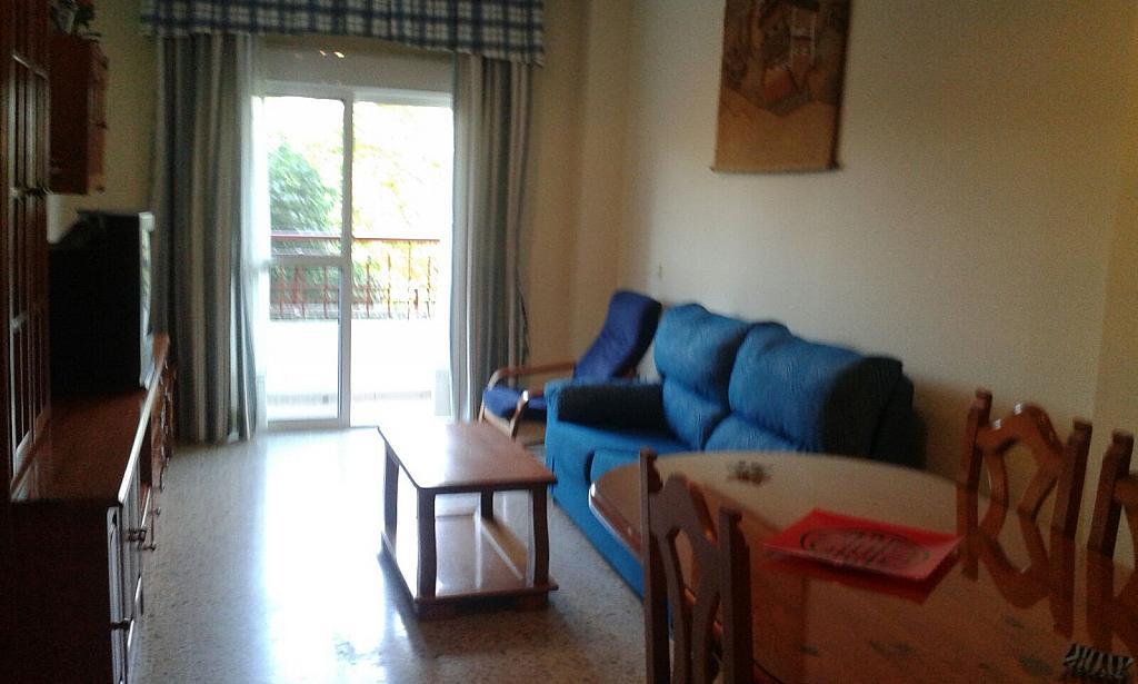 Piso en alquiler en calle Nuestra Señora de la Oliva, San Pablo en Sevilla - 324879730