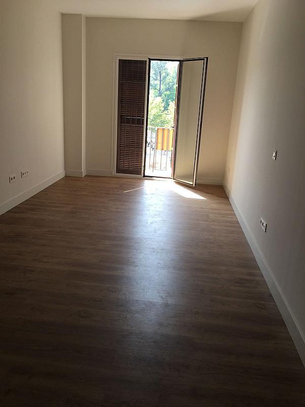Piso en alquiler en calle Jerez, Santa Cruz en Sevilla - 329113062