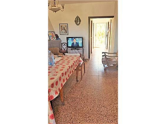 Chalet en alquiler en urbanización Camp de Lliria, Llíria - 273198686