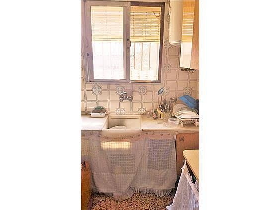 Chalet en alquiler en urbanización Camp de Lliria, Llíria - 273198689