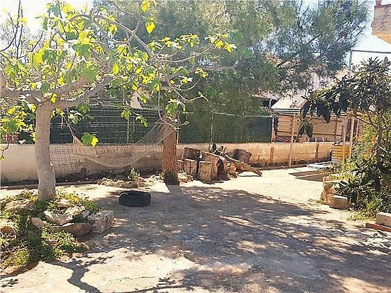 Chalet en alquiler en urbanización Camp de Lliria, Llíria - 273198707