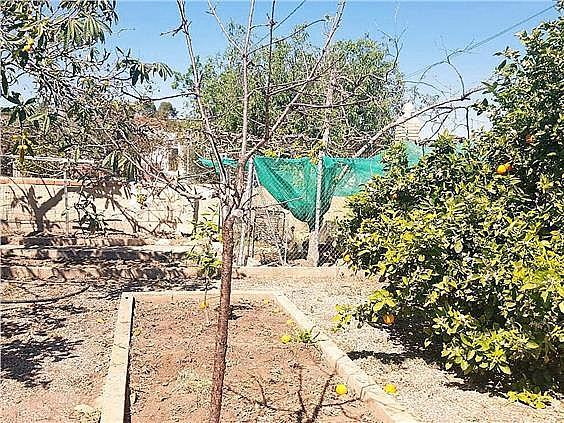 Chalet en alquiler en urbanización Camp de Lliria, Llíria - 273198710