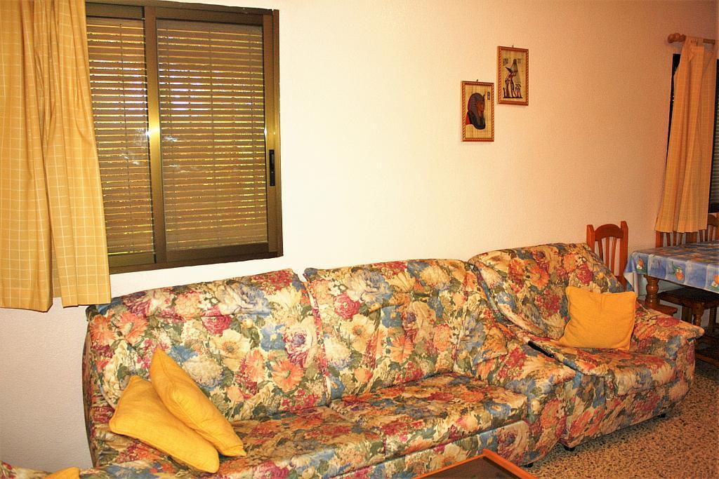 Salón - Chalet en alquiler en calle Diseminado, Llíria - 328018012