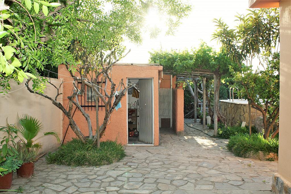 Patio trasero - Chalet en alquiler en calle Diseminado, Llíria - 328018086