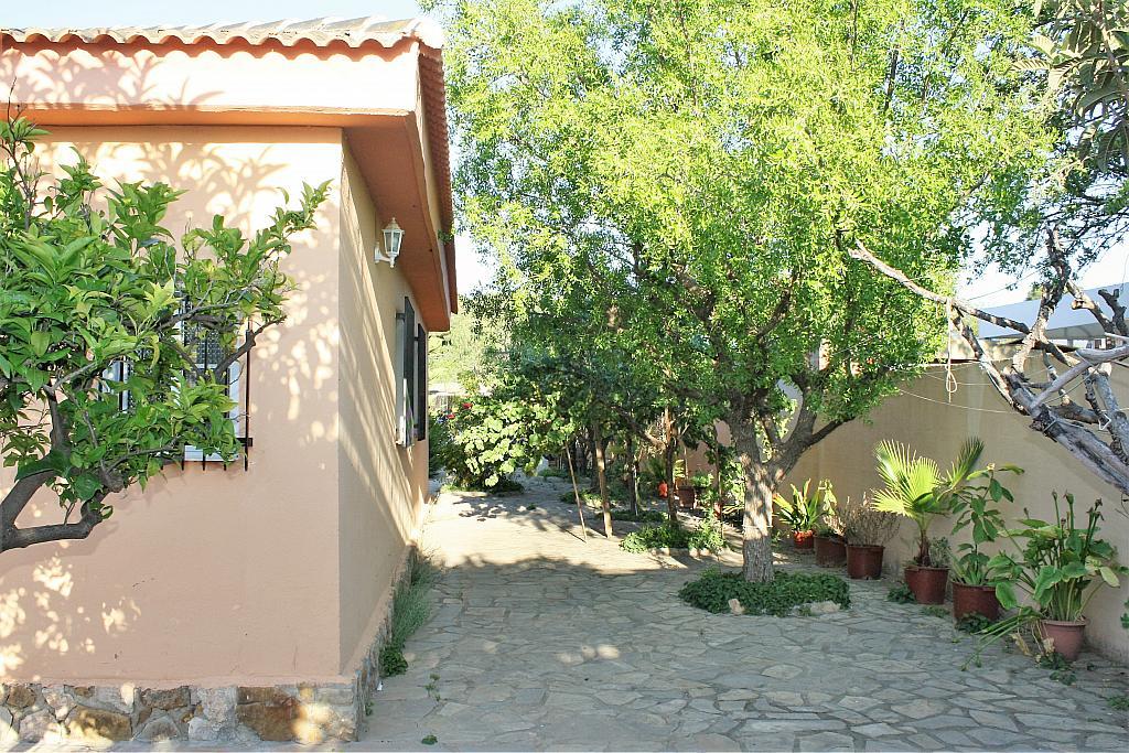 Patio trasero - Chalet en alquiler en calle Diseminado, Llíria - 328018091