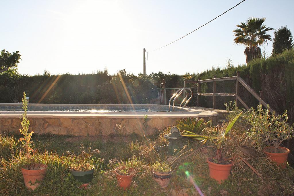 Piscina - Chalet en alquiler en calle Diseminado, Llíria - 328018092