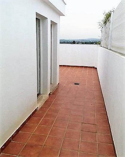 Terraza - Ático en alquiler en calle Vilamarxant, Casco Urbano en Vilamarxant - 347102941