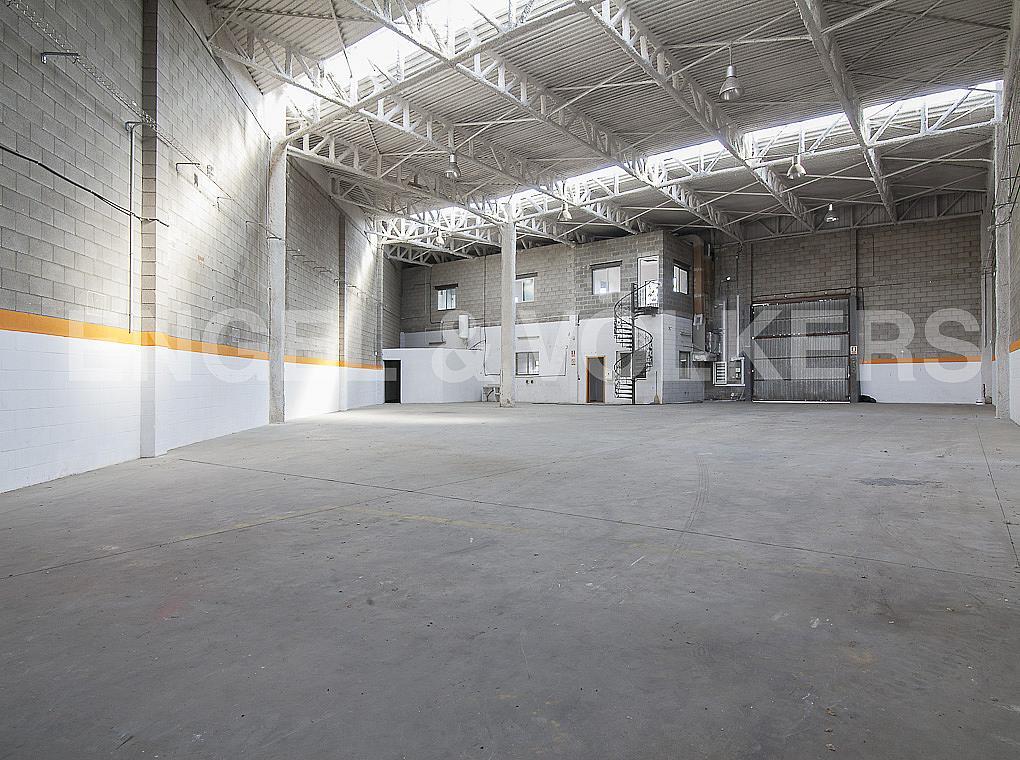 Planta baja - Nave industrial en alquiler en carretera II, Sant Andreu de la Barca - 280255148
