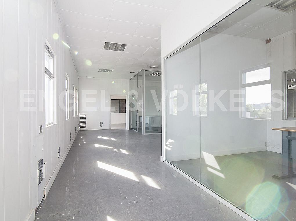 Despacho - Nave industrial en alquiler en carretera II, Sant Andreu de la Barca - 280256250