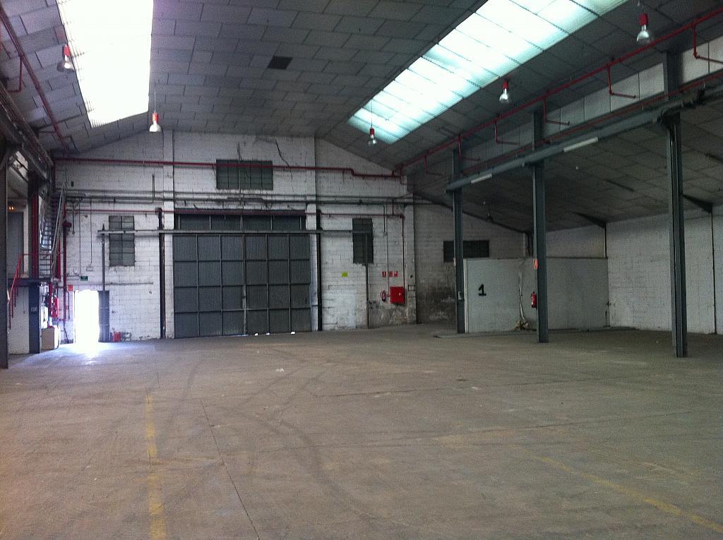 Planta baja - Nave en alquiler en calle Narcis Monturiol, Sant Just Desvern - 303870398