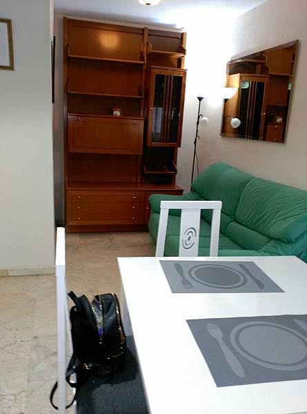 Foto - Piso en alquiler en ronda Camino de, Ronda en Granada - 301454172