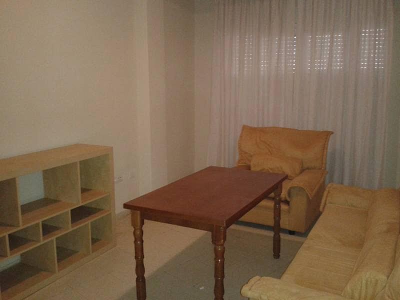 Foto - Piso en alquiler en calle Avenida Andaluces, Beiro en Granada - 284738201