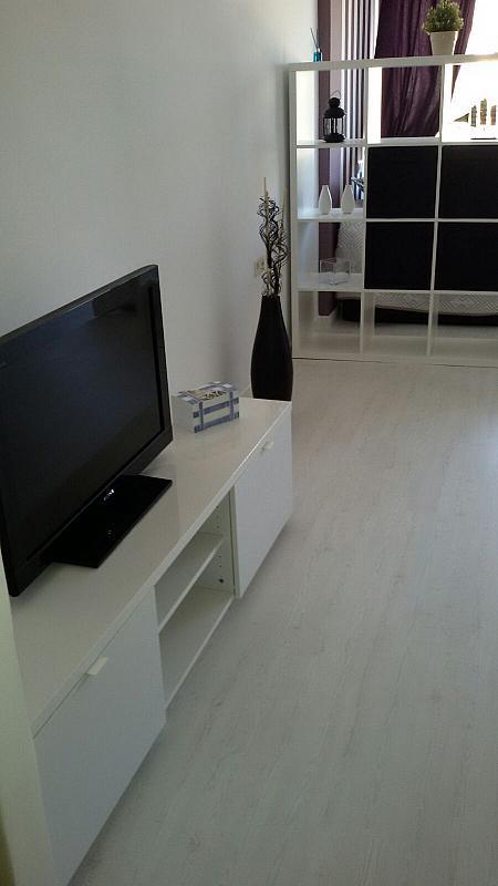 Imagen sin descripción - Apartamento en alquiler en Aguadulce - 279042954