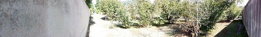 Imagen sin descripción - Parcela en alquiler en Amer - 278610411