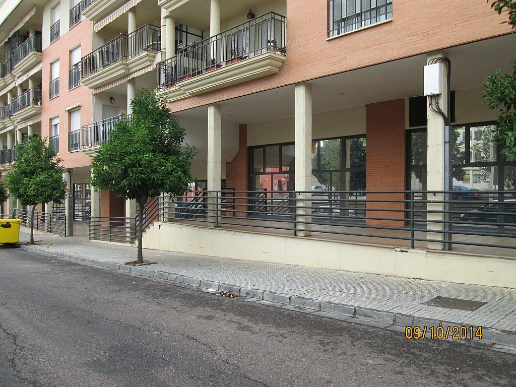 Oficina en alquiler en calle Ruta Via de la Plata, Mérida - 280649494