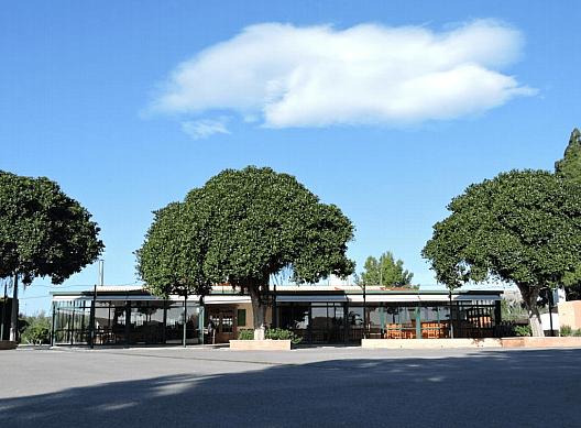 Local - Local comercial en alquiler en calle Camino Saborida, Disperso Partidas en Alicante/Alacant - 295085446