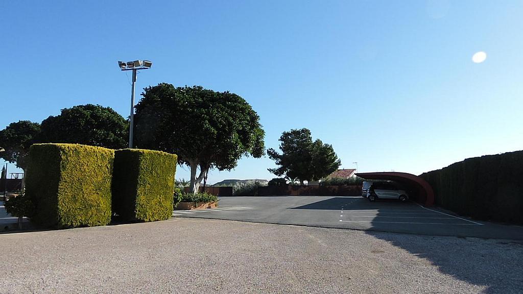 Local - Local comercial en alquiler en calle Camino Saborida, Disperso Partidas en Alicante/Alacant - 295085479