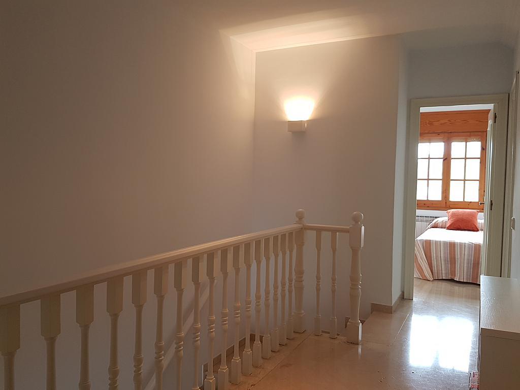 Pasillo - Casa adosada en alquiler en pasaje Esparragueres, Cabrils - 327647483
