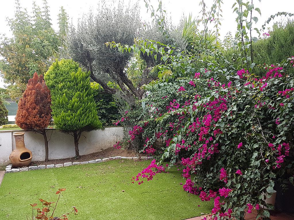 Terraza - Casa adosada en alquiler en pasaje Esparragueres, Cabrils - 327647607